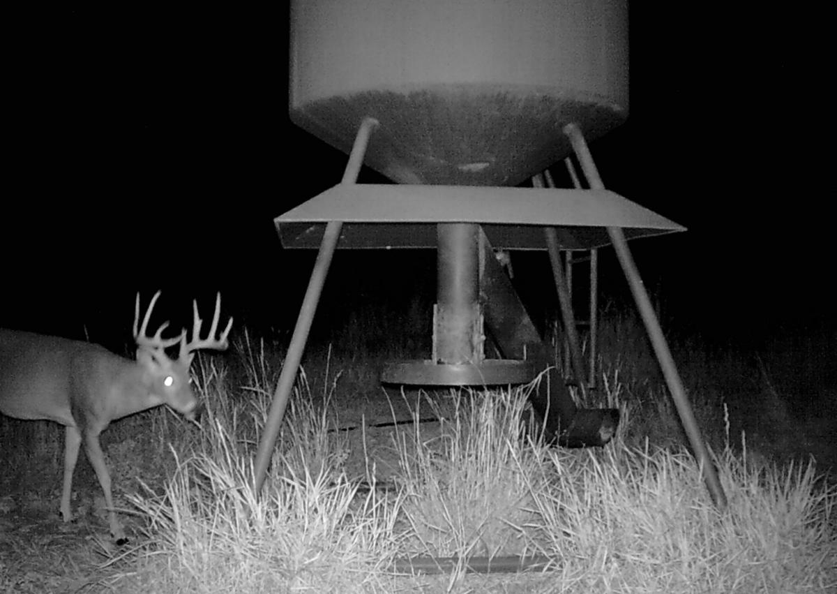 night solo game cam1 cropped
